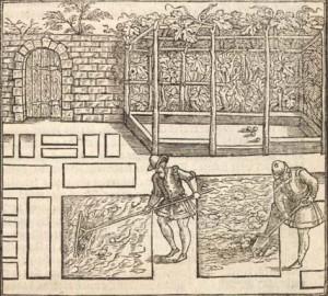 """Ilustración de un jardín renacentista del tratado """"The profitable art of gardening (1563"""" de Thomas Hill"""