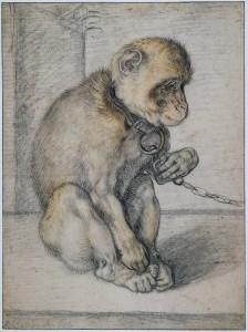 """""""Mono encadenado"""" de Hendrik Goltzius (1592)"""